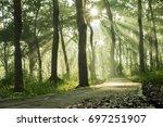 ray of light   Shutterstock . vector #697251907