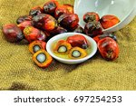 close up of fresh oil palm... | Shutterstock . vector #697254253