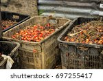 close up of fresh oil palm... | Shutterstock . vector #697255417