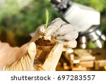 close up of biologist's hand... | Shutterstock . vector #697283557