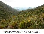 wild p ramo landscape in the... | Shutterstock . vector #697306603