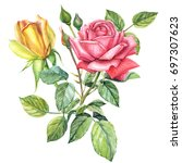 yellow and red roses  greeting... | Shutterstock . vector #697307623