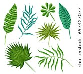 set of palm leaves. vector... | Shutterstock .eps vector #697427077