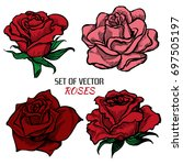 Stock vector set of four vector flat colored hand drawn roses linear design 697505197