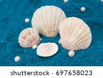pearls and shells | Shutterstock . vector #697658023