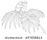 bird coloring book isolated on...
