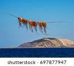 octopus dried under the sun of... | Shutterstock . vector #697877947