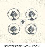 old oak design elements.... | Shutterstock .eps vector #698049283