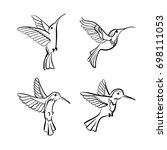 colibri. humming bird. vector... | Shutterstock .eps vector #698111053