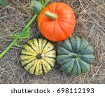 three winter squashes and... | Shutterstock . vector #698112193