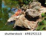 Rocks Beside A Pond With...