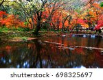 maple | Shutterstock . vector #698325697