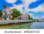 beautiful pink tropical...   Shutterstock . vector #698365723