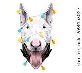 dog head breed bull terrier... | Shutterstock .eps vector #698458027