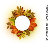 autumn round frame with dry and ... | Shutterstock . vector #698530387