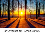 Winter Sunset In Winter Forest