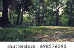 forest park scenery    Shutterstock . vector #698576293
