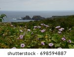wild flowers along the hiking... | Shutterstock . vector #698594887