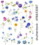 floral isolated set. raster... | Shutterstock . vector #698653087