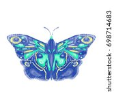exotic unusual butterfly ... | Shutterstock .eps vector #698714683