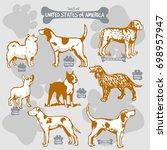 dogs breeds of the world vector ... | Shutterstock .eps vector #698957947