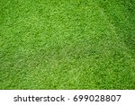 the lawn and green grass   Shutterstock . vector #699028807