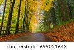 Autumn Foliage At Peak Distric...