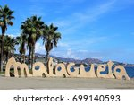 malagueta   Shutterstock . vector #699140593