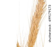 close up of wheat isolated on... | Shutterstock . vector #699179173
