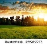 beautiful landscape in the... | Shutterstock . vector #699290077