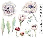 watercolor floral set. floral... | Shutterstock . vector #699335113