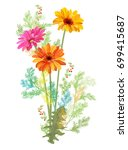 Bouquet Of Gerbera Daisy And...