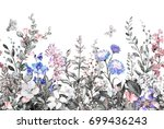 seamless rim. border with herbs ... | Shutterstock . vector #699436243