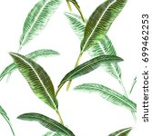 illustration of leaf on white... | Shutterstock . vector #699462253