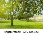 apple tree and green apple | Shutterstock . vector #699536323
