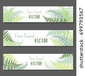 fern frond vector illustration... | Shutterstock .eps vector #699793567