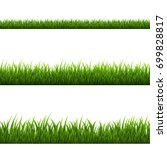 grass border  vector... | Shutterstock .eps vector #699828817