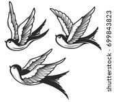 set of swallow illustrations... | Shutterstock .eps vector #699843823