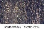 tree bark texture background | Shutterstock . vector #699843943