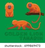 Golden Lion Tamarin Cartoon...