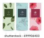 branding packaging flower... | Shutterstock .eps vector #699906403