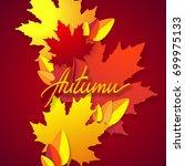 autumn. vector season... | Shutterstock .eps vector #699975133