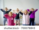 group of seniors doing exercises | Shutterstock . vector #700078843