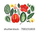 set of tropical flowers and... | Shutterstock . vector #700151833
