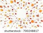 autumn composition. frame made... | Shutterstock . vector #700248817