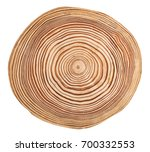 cross section of larch tree... | Shutterstock . vector #700332553