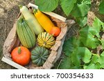 box with fresh pumpkins and...   Shutterstock . vector #700354633