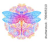 exquisite ornate stylized... | Shutterstock .eps vector #700405213