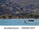 kolimpithres beach  paros... | Shutterstock . vector #700407337