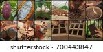 sequence of 12 photos that... | Shutterstock . vector #700443847